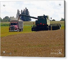 August Harvest Acrylic Print by J McCombie