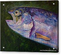 Aurons Rainbow Trout Acrylic Print