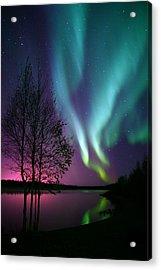 Aurora Display Acrylic Print