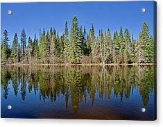 Acrylic Print featuring the photograph Ausable Reflections 1768 by Michael Peychich