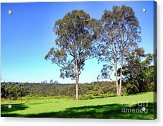 Acrylic Print featuring the photograph Aussie Gum Tree Landscape By Kaye Menner by Kaye Menner