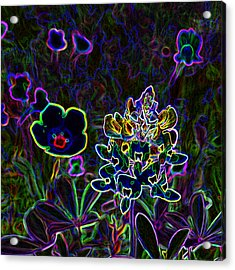 Austin Flowers After The Party Acrylic Print