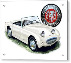 Austin Healey Bug Eye White Acrylic Print by David Kyte