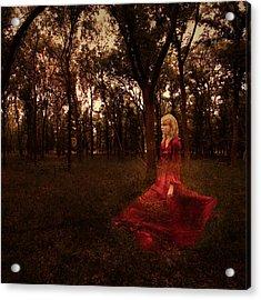 Lost Acrylic Print by Amber Dopita