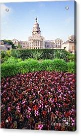 Austin Texas State Capitol Flowers Acrylic Print by Paul Velgos