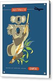 Australia Koala Bears Qantas Empire Airways Vintage Travel Poster Acrylic Print