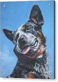 Australian Cattle Dog 2 Acrylic Print by Lee Ann Shepard