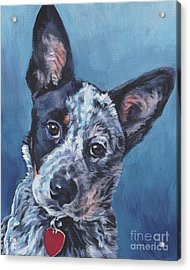 Acrylic Print featuring the painting Australian Cattle Dog by Lee Ann Shepard