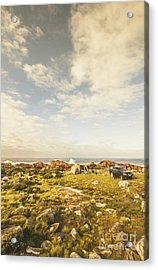 Australian Exploration Acrylic Print