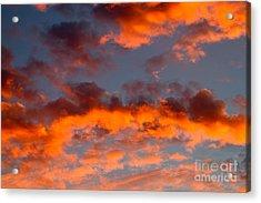 Australian Sunset Acrylic Print by Louise Heusinkveld