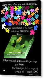 Autism, The Outside Package 2 Acrylic Print by Donna Cavanaugh
