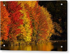 Acrylic Print featuring the photograph Autumn Afternoon At The Cove by William Jobes