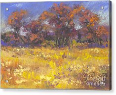 Autumn Afternoon Acrylic Print by Grace Goodson
