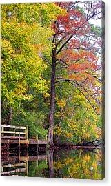 Autumn Along Brices Creek Acrylic Print