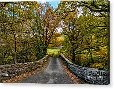 Autumn Ambiance Acrylic Print by Adrian Evans