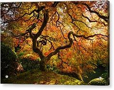 Autumn Arrival Acrylic Print