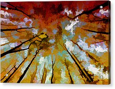 Autumn Ascent Acrylic Print