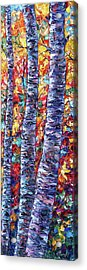 Autumn  Aspen Trees Contemporary Painting  Acrylic Print