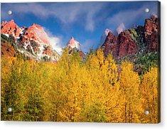 Acrylic Print featuring the photograph Autumn Aspens by Andrew Soundarajan