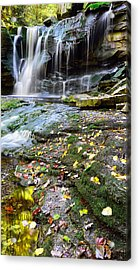 Autumn At Elakala Acrylic Print