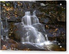 Autumn At Laurel Falls Acrylic Print by Darrell Young