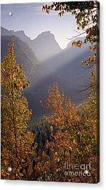 Autumn At Logan Pass Acrylic Print
