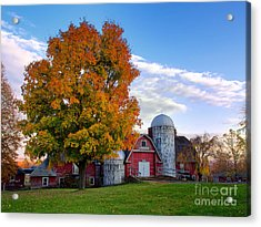 Autumn At Lusscroft Farm Acrylic Print by Mark Miller