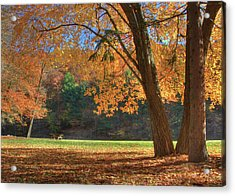 Acrylic Print featuring the photograph Autumn At Lykens Glen by Lori Deiter