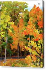Autumn At Olana 7 Acrylic Print