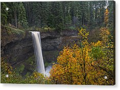 Autumn At South Falls Acrylic Print by Loree Johnson