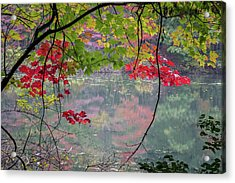 Autumn At Spirit Springs Acrylic Print