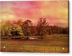 Autumn At The Cattle Farm Landscape Art Acrylic Print by Jai Johnson