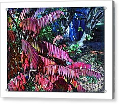 Acrylic Print featuring the photograph Autumn At The Taverne by Joan  Minchak
