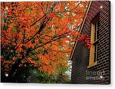 Autumn At The Window Acrylic Print