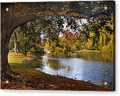 Autumn At Woodlawn Acrylic Print