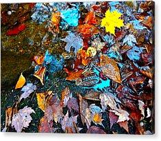 Autumn B 2015 124 Acrylic Print by George Ramos