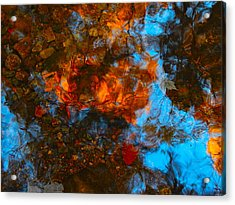 Autumn B 2015 35 Acrylic Print by George Ramos