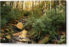 Autumn Babble Acrylic Print by Matt Tilghman