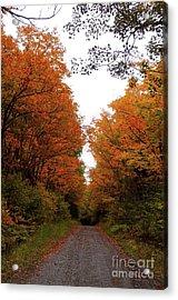 Autumn Backroads Acrylic Print