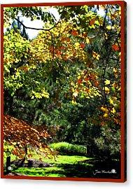 Acrylic Print featuring the photograph Autumn Backyard by Joan  Minchak