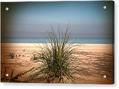 Autumn Beach Acrylic Print
