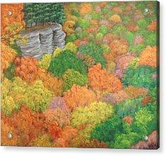 Autumn Beauty Acrylic Print by Hollie Leffel