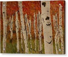 Autumn Birch Forest Acrylic Print by Betty-Anne McDonald