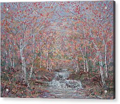 Autumn Birch Trees. Acrylic Print