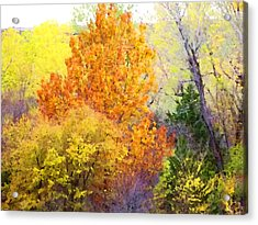 Acrylic Print featuring the digital art Autumn Blaze  by Shelli Fitzpatrick