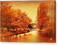 Autumn Breeze Acrylic Print by Wallaroo Images