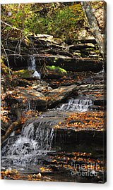 Acrylic Print featuring the photograph Autumn Brook by Diane E Berry
