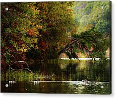 Autumn By The Lake Acrylic Print by Scott Fracasso