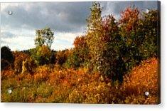 Autumn Calico Along The Arroyo El Valle New Mexico Acrylic Print by Anastasia Savage Ealy