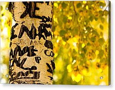 Autumn Carvings Acrylic Print by James BO  Insogna